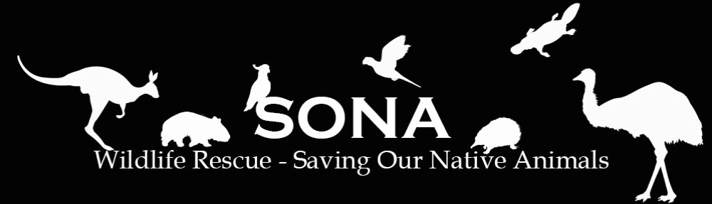 SONA Wildlife Rescue